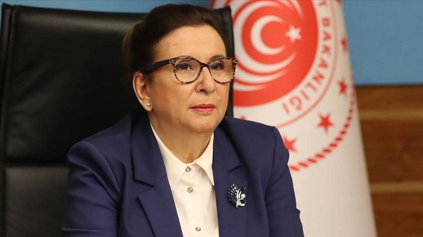 مرز ترکیه بازگشایی شد